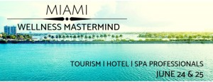 Wellness Mastermind- Tourism | Hotel | Spa | Professionals
